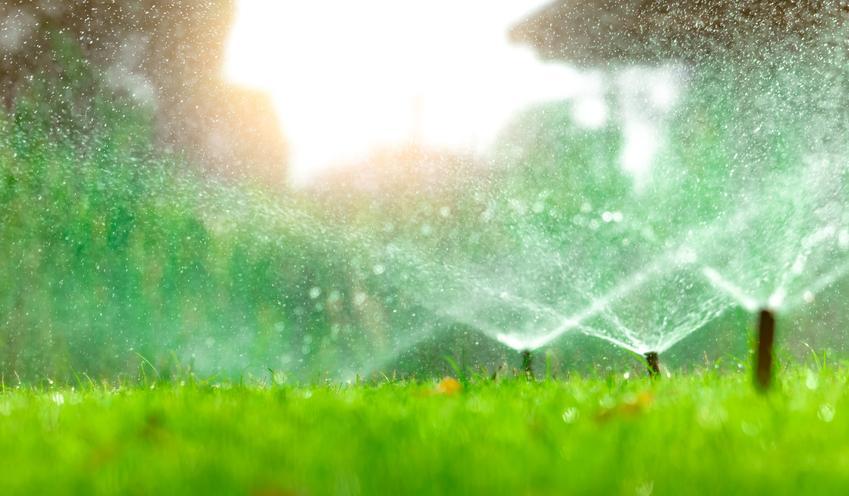 Podlewanie trawy, a także system nawadniania ogrodu i na czym polega system podlewania ogrodu
