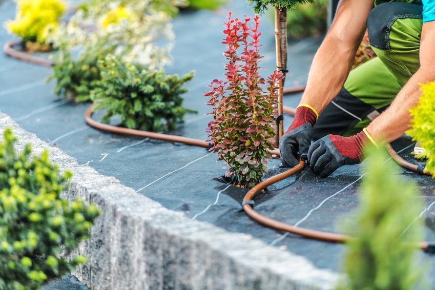 System nawadniania ogrodu podczas montażu, a także polecany system podlewania ogrodu
