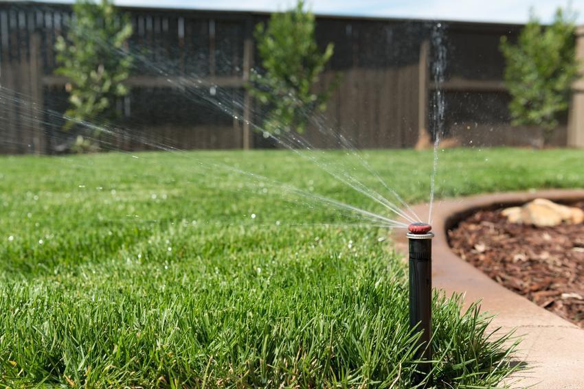 Podlewanie trawnika w sposób automatyczny, a także porady, ile podlewać trawnik