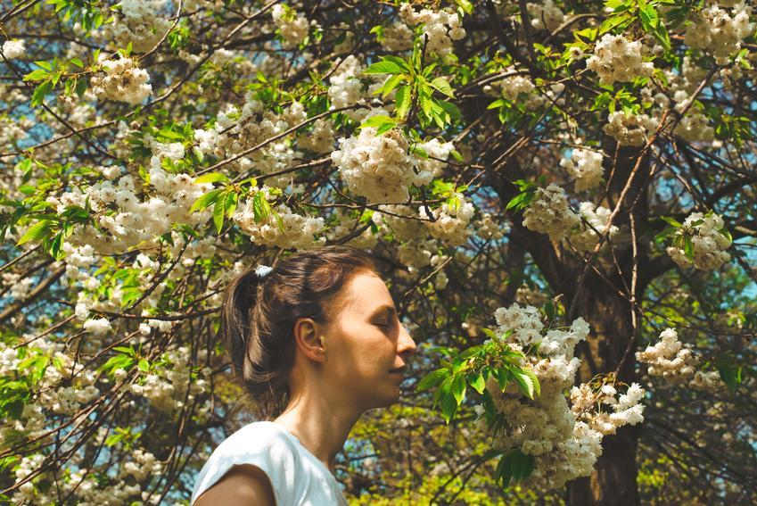 Kobieta na tle kwitnącego drzewa, a także kalendarz pylenia dla alergików
