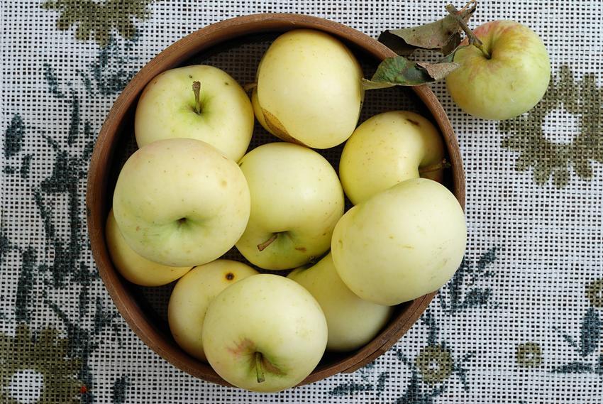 Jabłka papierówki w koszyku na stole, a także kompot z papierówek i przepis