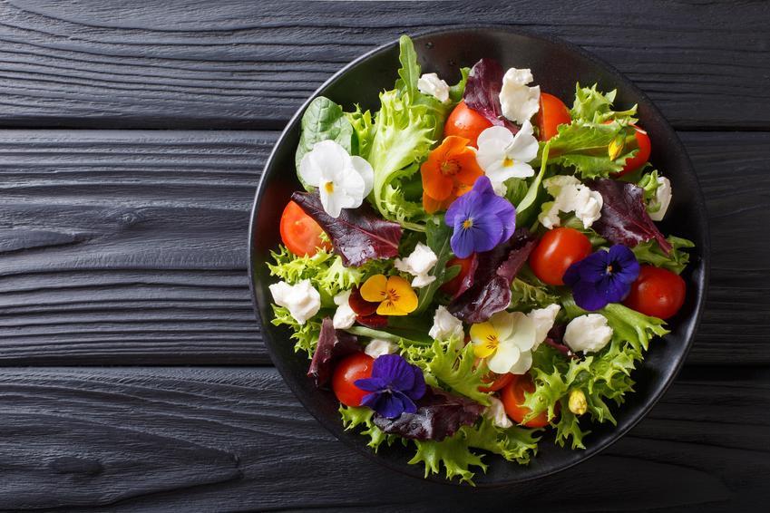Pyszna sałatka wiosenna z kwiatami do dekoracji oraz kwiaty jadalne w Polsce