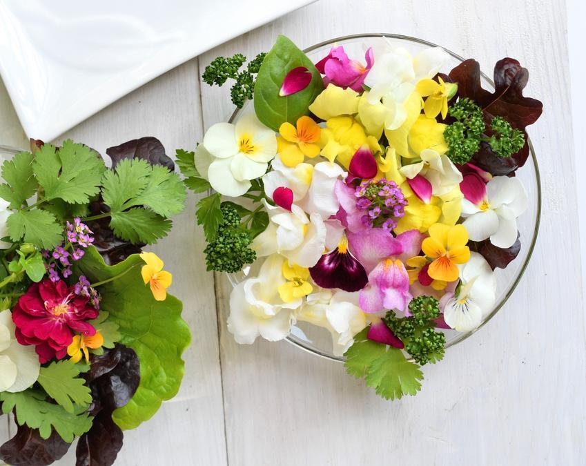 Jadalne płatki kwiatów na szklanym półmisku, a także polecane kwiaty jadalne w Polsce