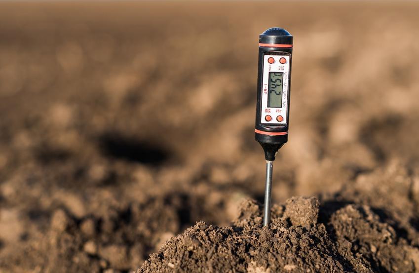 Miernik kwasowości gleby wbity w ziemię oraz domowe sposoby na to, jak i czym zakwasić ziemię