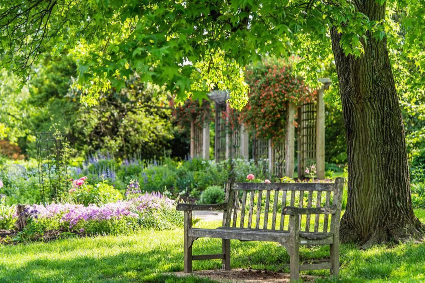 Jaka ławka ogrodowa lepsza – drewniana, plastikowa, metalowa czy może kamienna?
