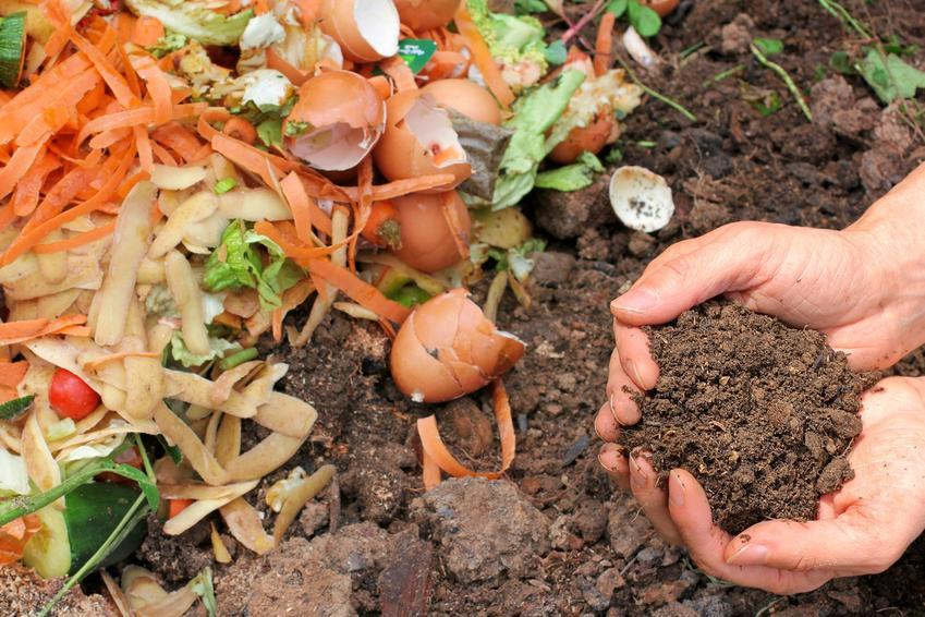 Ziemia i kompost w ogrodzie, a także kompostownik i jak używać komost