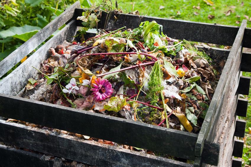 Kompost przygotowywany w skrzynce na działce, a także porady, jak używać kompost