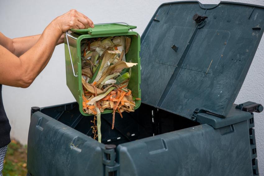 Kobieta zrzucająca resztki do pojemnika, a także porady jak zrobić kompostownik w ogrodzie