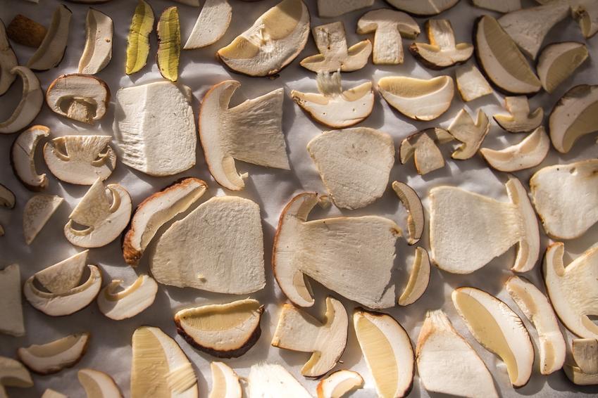 Grzyby pokrojone w plastry przed suszeniem, a także jak suszyć grzyby w piekarniku