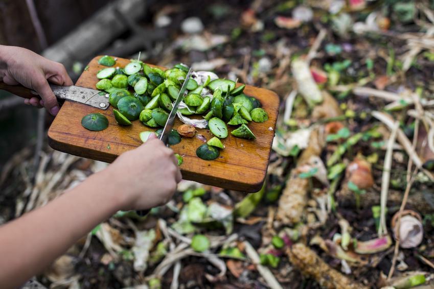 Resztki zrzucane do kompostownika, czyli kompost i kompostowanie krok po kroku
