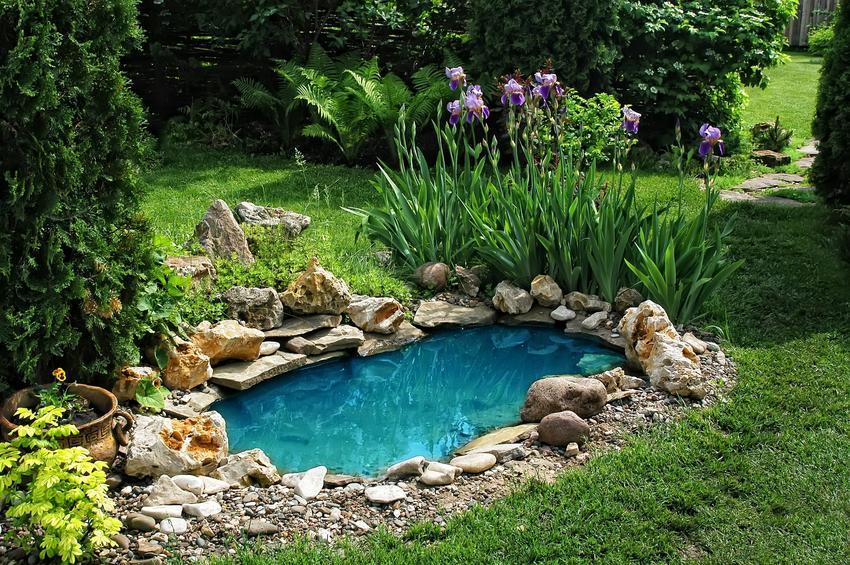 Piękne oczko wodne w ogrodzie, a także oczka wodne plastikowe polecane do montażu