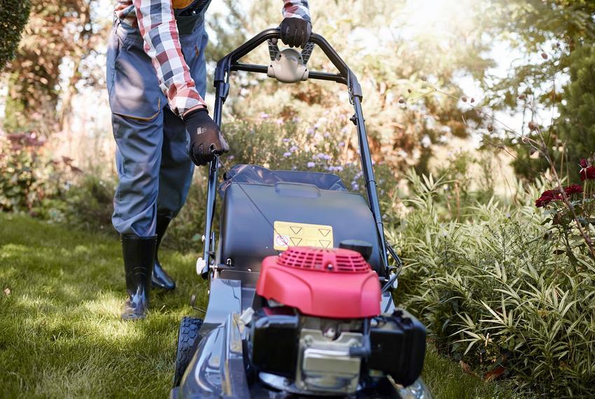 Koszenie trawy - jak robić to poprawnie?