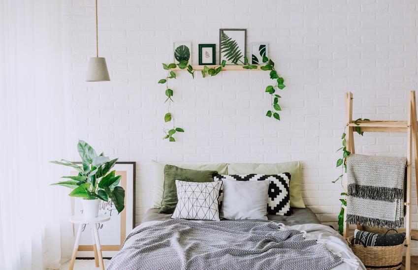Pięknie zaaranżowana sypialnia, a także kwiaty do sypialni, kwiaty doniczkowe