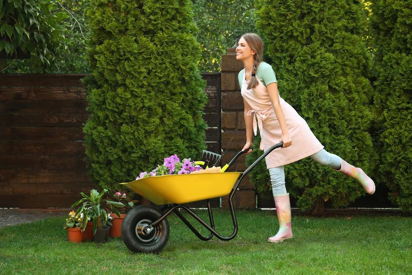 Kobieta z taczką w ogrodzie, a także pomysł na ogród, projekty ogrodów
