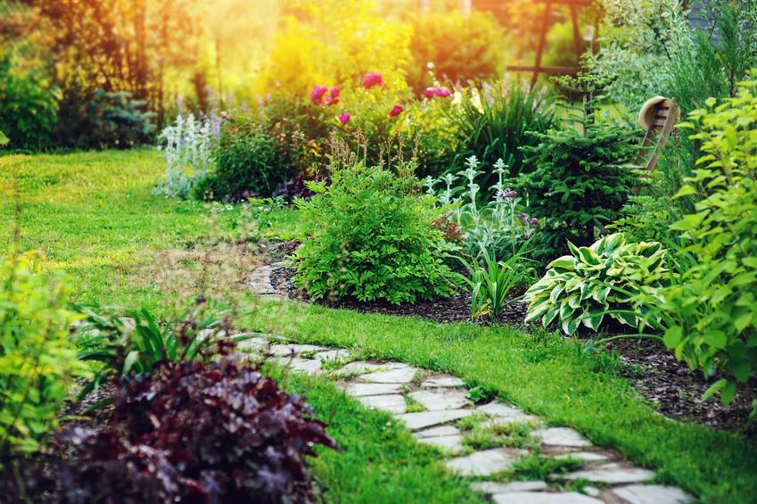 Pięknie zaaranżowany ogród z krzewami, a także pomysł na ogród, projekty ogrodów