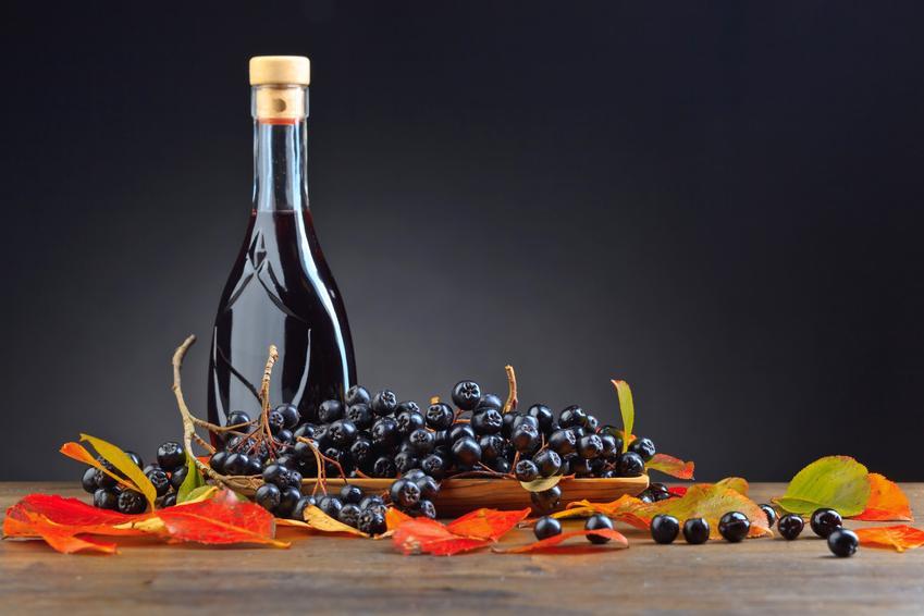 Sok z aronii w butelce, a także świeże owoce oraz przepisy, jak zrobić sok z aronii