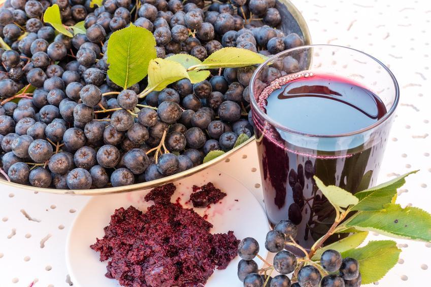 Sok aroniowy i owoce aronii w misce, a także przepisy, jak zrobić sok z aronii
