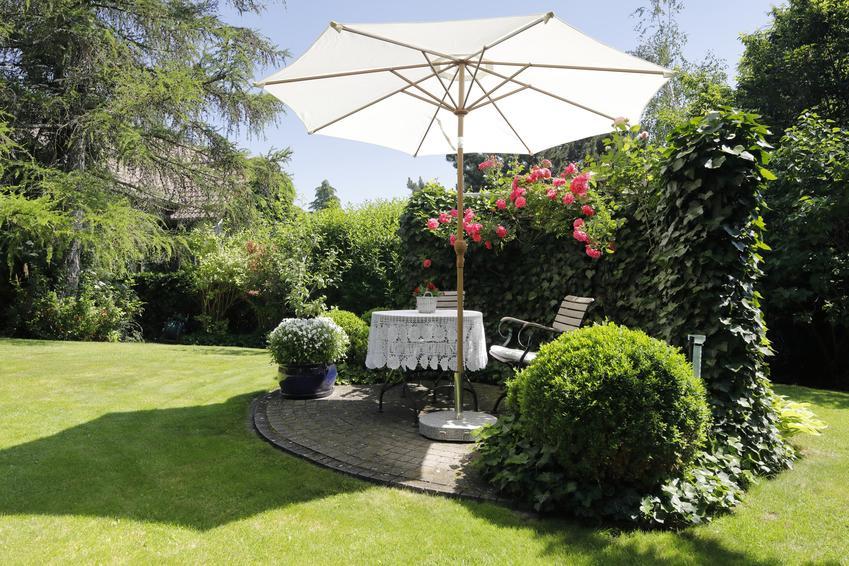 Parasol ogrodowy na słońcu w ogrodzie oraz polecane parasole ogrodowe w sprzedaży