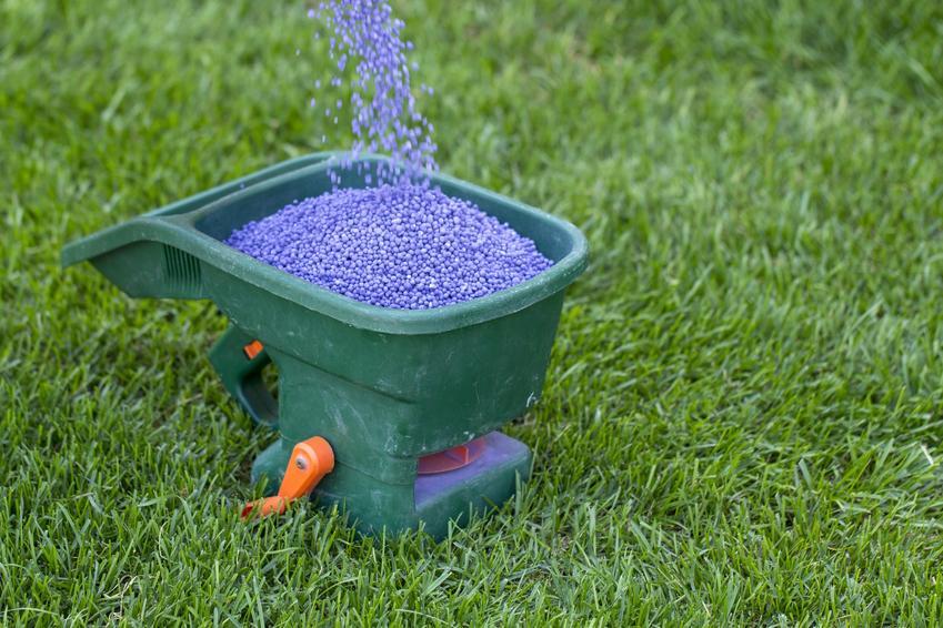 Suchy nawóz jesienny do trawy, czyli granulowany jesienny nawóz do trawników