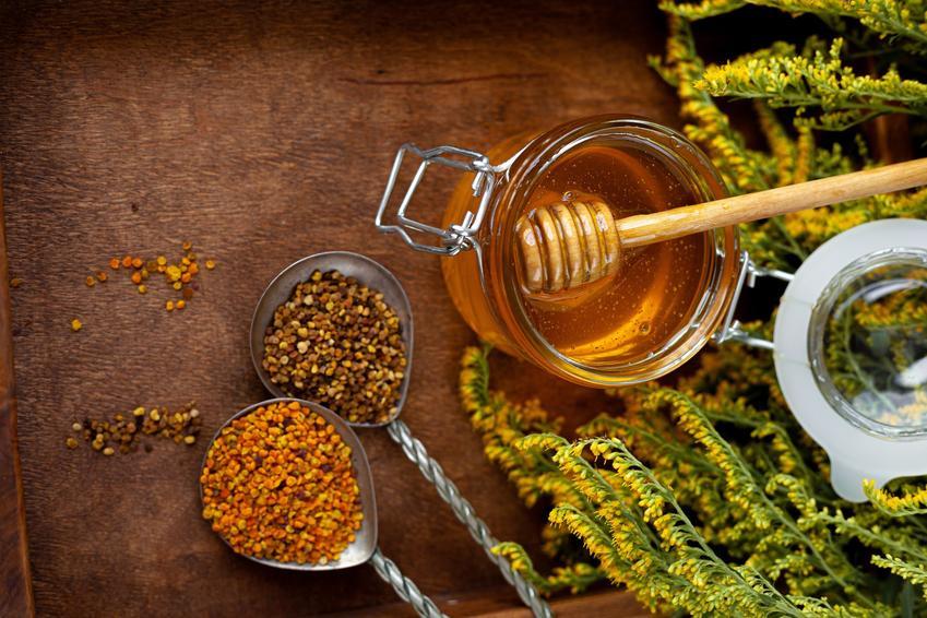 Miód nawłociowy na stole oraz miód z nawłoci, właściwości lecznicze, zastosowanie