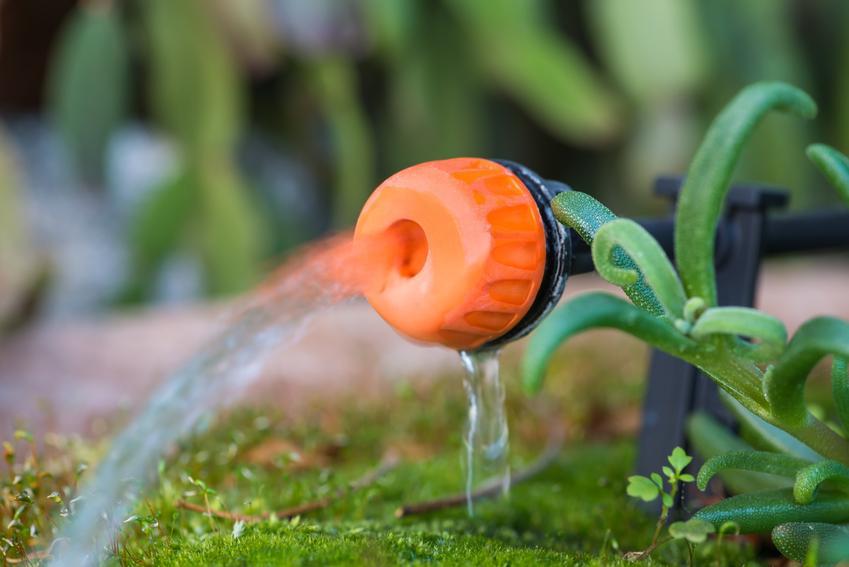 System nawadniania i doniczki z systemem nawadniania oraz duże donice z nawadnianiem
