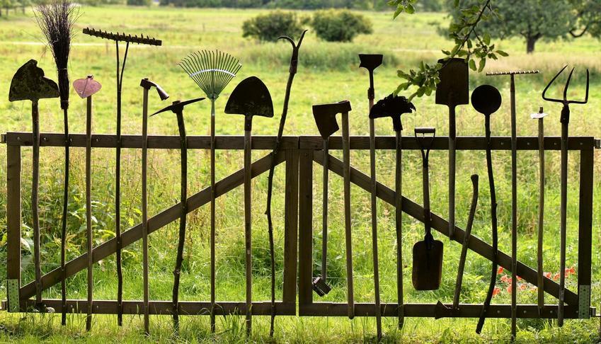 Wybór sekatora do pracy w ogrodzie