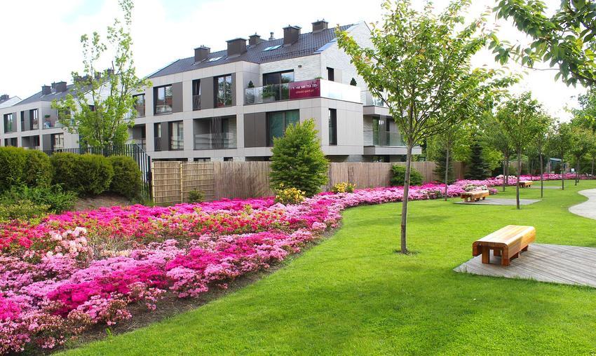 Jakie płytki wybrać do aranżacji ogrodu?