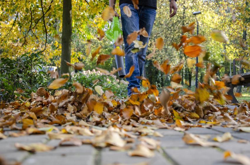 Jakich narzędzi potrzebujesz do jesiennych prac w ogrodzie?
