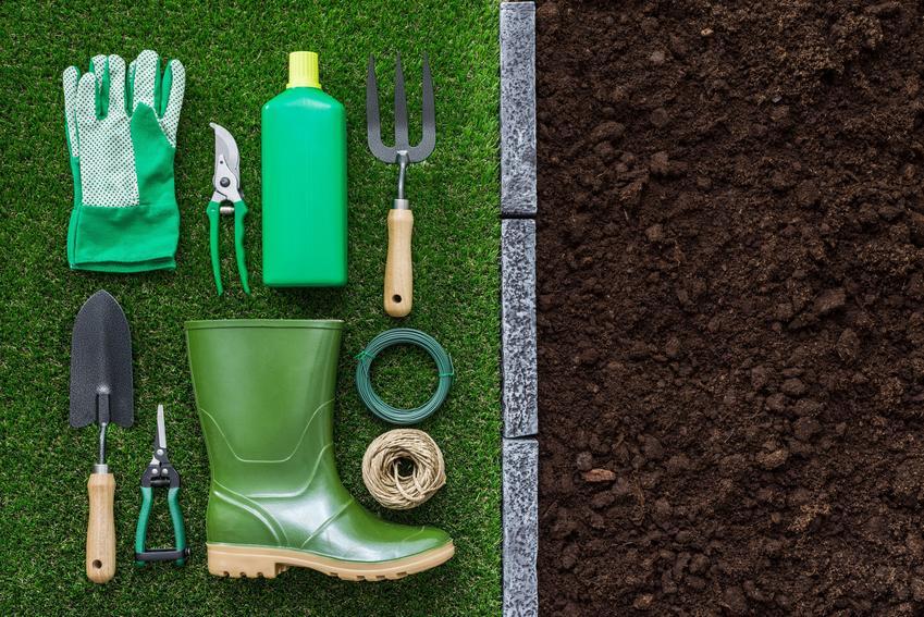 Jak przygotować narzędzia ogrodnicze do sezonu?