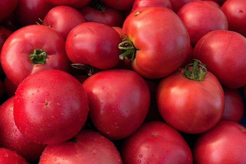 Pomidory malinowe małej odmiany na stosiku, a także informacje o uprawie i pielęgnacja, odmiany, smak, sadzenie, sadzonki
