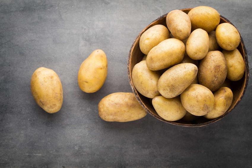 Ziemniaki mączyste w misce na ciemnym stole, a także odmiany, uprawa, zastosowanie i pielęgnacja krok po kroku