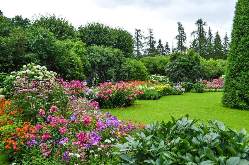 Piękny ogród ozdobiony licznymi bylinami i innymi roślinami wieloletniki, a także TOP 12 wyjątkowych kwiatów ogrodowych wieloletnich