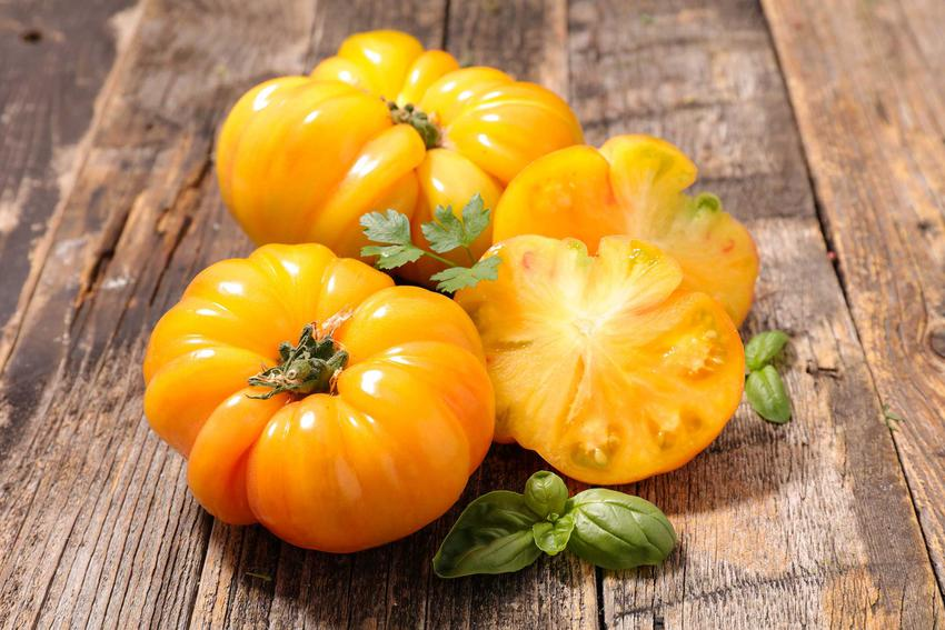 Duże żółte pomidory na stole z drewna, a takze informacje o odmianach żółtych pomidorów, uprawa i pielęgnacja odmian krok po kroku