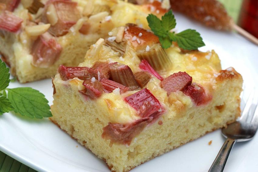 Kawałeczek ciasta ucieranego z rabarbarem na talerzyku, a także przepisy na ciasta ucierane z rabarbarem, proste i szybkie placki