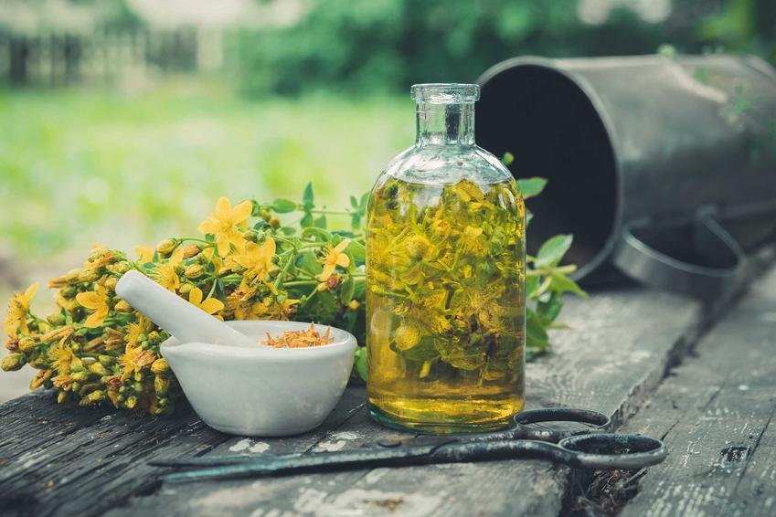 Nalewka z pachnących ziół w szklanek butelce, a także TOP 5 najlepszych butelek do nalewek, czyli w czym przechowywać nalewki