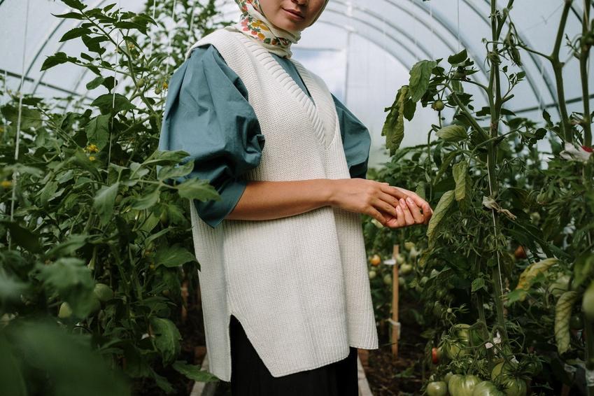 Dlaczego warto hodować warzywa w tunelu ogrodowym?