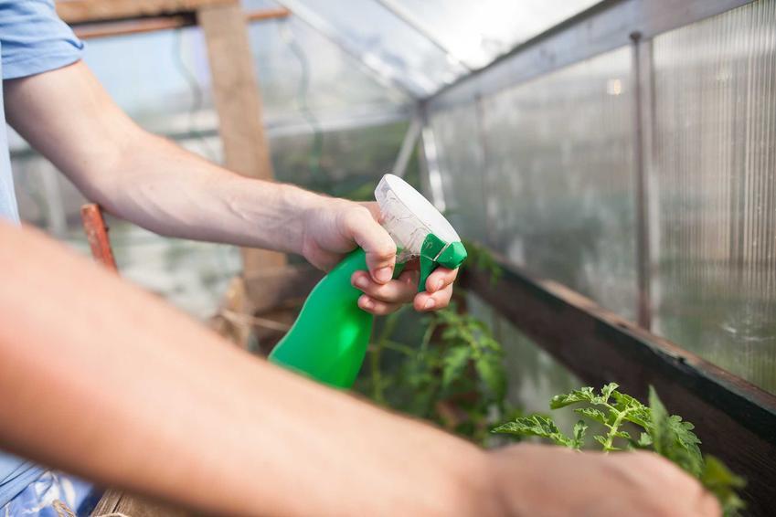 Nawożenie roślin w ogrodzie nawozem Agrecol, a także opis preparatów, rodzaje, zastosowanie, dawkowanie oraz opinie