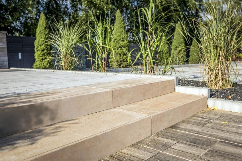Sposoby na uporządkowaną zieleń w aranżacjach ogrodowych
