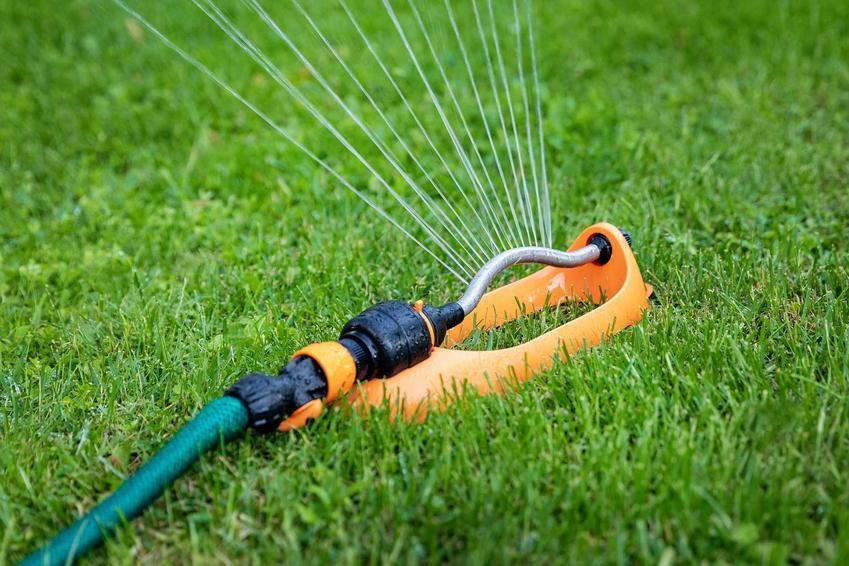 Automatyczny zraszacz do ogrodu w trawie, a także TOP 4 najlepsze zraszacze do ogrodu, funkcjonalne i wygodne