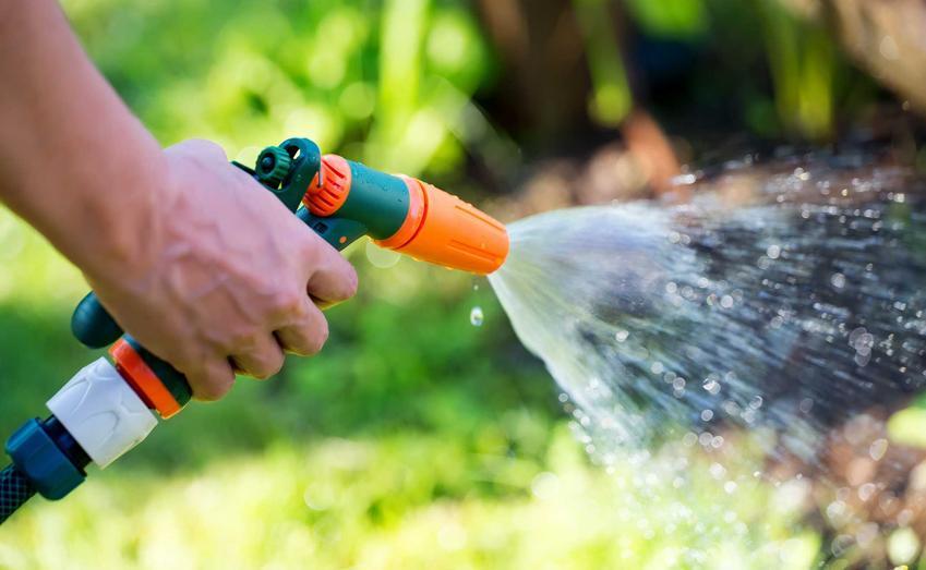 Zraszacz ręczny do ogrodu podczas podlewania roślin, a także 4 najlepsze zraszacze do ogrodu krok po kroku