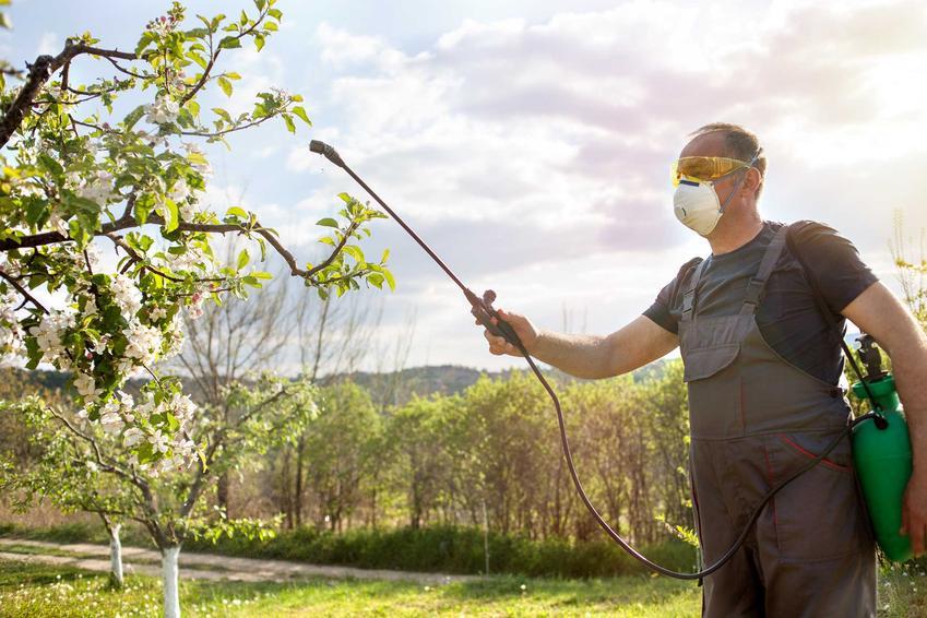 Opryski drzewek owocowych w czasie kwitnienia środkiem Kaptan, a także skład preparatu, zastosowanie, działanie oraz porady