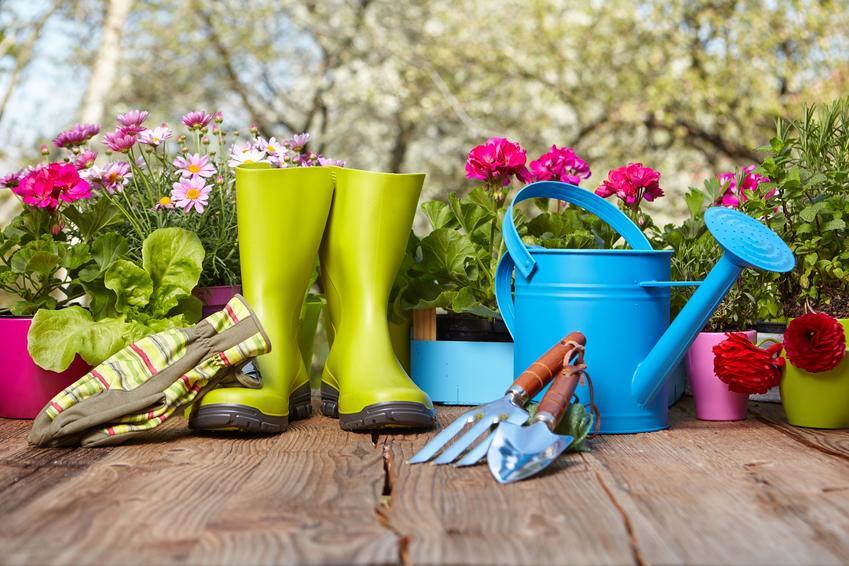 Jak zaaranżować prywatny ogród?