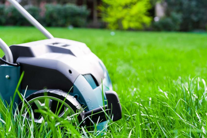 Sprzęt ogrodowy stoi na trawniku, czym jest wertykulacja i jak działa wertykulator do trawy, zasady działania wertykulatora