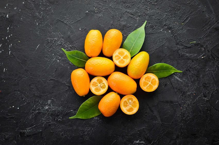 Owoce kumkwatu na stoliku, a także opis kumkwatu i jego występowanie oraz tajniki uprawy w doniczce