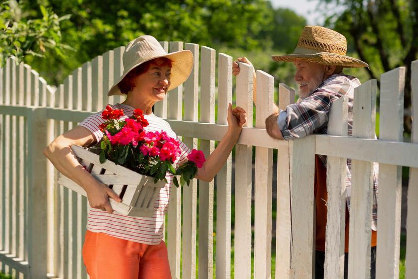 Dwoje ludzi stoją po różnych stronach płotu, sąsiedzi rozmawiają przez płot, czy trzeba obciąć gałęzie drzewa, które rośnie po stronie sąsiada