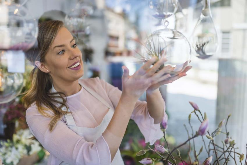 Kobieta podnosi doniczkę w kształcie przezroczystej kuli, najlepsze doniczki do uprawiania oplątwy, czy tillandsia jest rośliną ozdobną