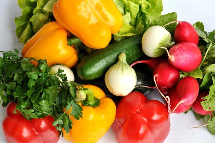 Świeże owoce i warzywa na białym tle, a także porady i wskazówki, jak przechowywać warzywa i owoce