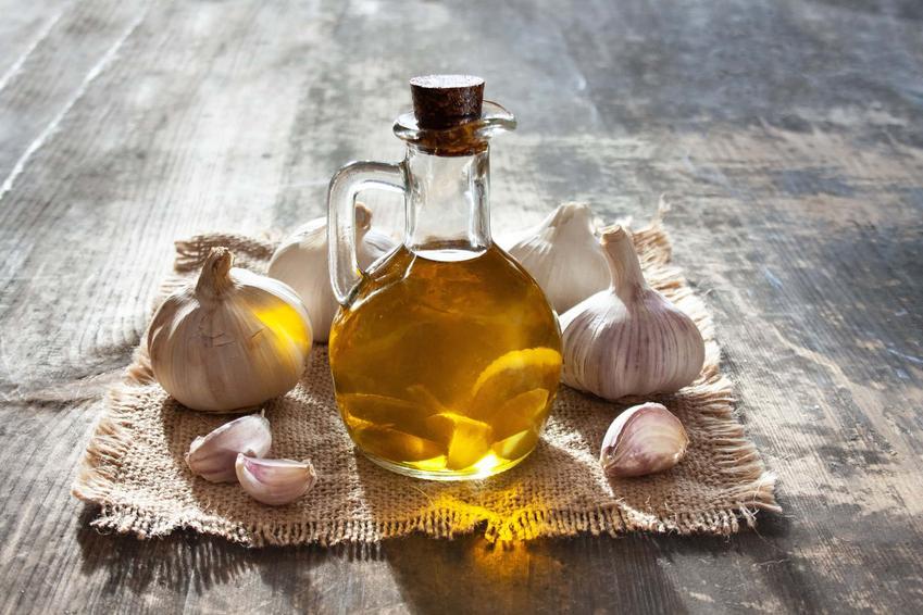 Czosnek oraz oliwa czosnkowa, a także właściwości czosnku, jego wpływ na zdrowie i porady kulinarne