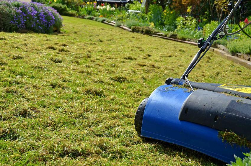Areator wertykulator to przydatne urządzenie w każdym ogrodzie. Służą do napowietrzania ziemi i poprawiania struktury trawnika