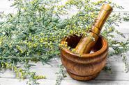 Piołun - roślina o szerokim zastosowaniu - oto, jak ją wykorzystać!